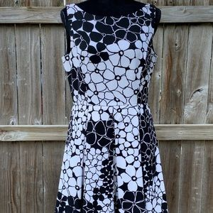 Peck and peck dress size 10